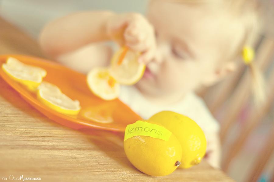 Sesja dziecięca z rekwizytami - owoce.