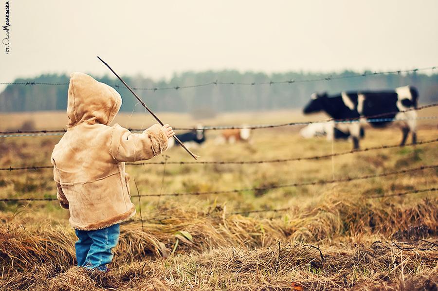 Projekt fotograficzny - zwierzęta. Zdjęcie dziecka w plenerze, ze zwierzętami wiejskimi.